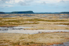 Low tide ocean coast at South Pacific Royalty Free Stock Photography