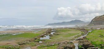 Low tide panorama, Royalty Free Stock Images
