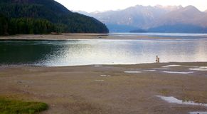 Low Tide at Pitt Lake Royalty Free Stock Photos
