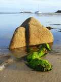 Exposed rock at Low Tide Royalty Free Stock Images