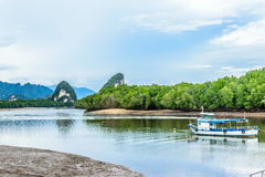 Low tide river. Mangrove island in krabi town Royalty Free Stock Image