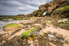 Low tide at Saddle Rocks Royalty Free Stock Photography
