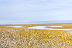 Low tide on sand beach in Normandy Royalty Free Stock Photo