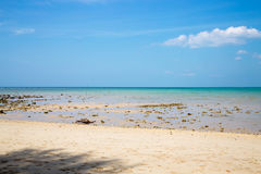 Low tide on a sandy beach with blue sky Stock Photos