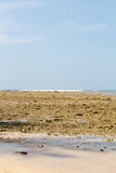 Low tide on a sandy beach with blue sky Stock Images