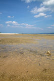 Low tide on a sandy beach with blue sky Stock Photography