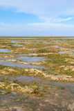 Low tide at Sanur Beach Bali Royalty Free Stock Photos