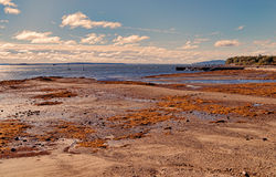 Low tide at Searsport Maine in early morning light Royalty Free Stock Photos
