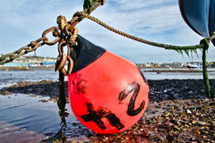 Low Tide At Shaldon Harbour Royalty Free Stock Image