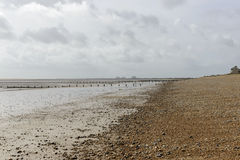 Low tide on shingle beach at New Romney Stock Photos