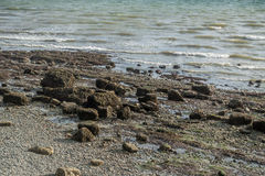 Low Tide Shoreline 2 Royalty Free Stock Photography
