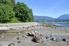 Low Tide and Stanley Park Royalty Free Stock Image