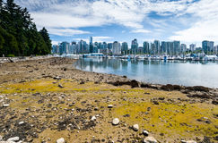 Low Tide at Stanley Park, Vancouver, BC. View of Vancouver from Stanley Park waterfront at low tide Royalty Free Stock Photos