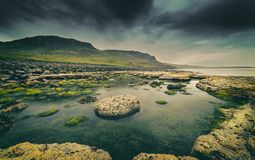 Low Tide Stones Covered in Green Moss - South Coast of the Isle Royalty Free Stock Photos