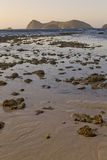Low Tide Sunset Royalty Free Stock Images