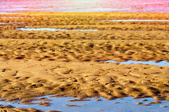 Low tide at sunset. Royalty Free Stock Image