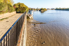 Low tide on Thames, Chiswick royalty free stock photo