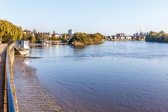 Low tide on Thames, Chiswick stock photography