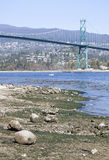Low Tide In Vancouver Stock Images