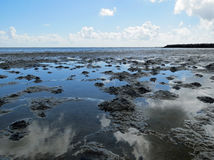 Low tide on the Wadden Royalty Free Stock Photo