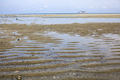 Low tide water level on the river due to drought impacts.  Stock Photo