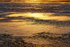 Low tide water reflecting sunset Stock Photography