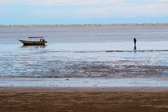 Low tide waters in Bako Stock Photography