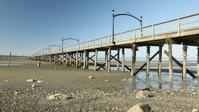 Low Tide, White Rock Beach Pier, BC stock video