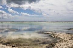 Low Tide In Zanzibar Stock Photography
