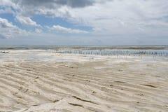 Low Tide In Zanzibar Royalty Free Stock Images