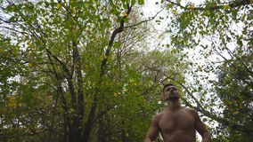 Low view of handsome muscular man jogging along trail at forest on summer day. Athletic guy running along path at nature. Young sportsman training outdoor stock footage