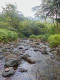 Low Water Flow In The Hills. Under the bright sunlit sky, clear flowing water gently navigates along the rocky river bed bordered by dense green vegetation stock photography