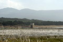 Low water levels in Theewaterskloof dam, Western Cape. Tree trunks are visible due to low water levels in Theewaterskloof dam due to severe drought, Western Cape Stock Photography