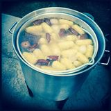 Lowcountry boil cooking in pot. Aluminum pot cooking lowcountry boil with sweet corn on the cob, red potatoes, sausage and shrimp and crawfish Royalty Free Stock Images