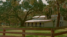 Lowcountry Stable. A photograph of a horse stable in the lowcountry of South Carolina Stock Image
