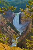 Lowe Yellowstone Falls Stock Images