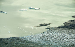 Lowell Glacier och sjö med isberg, Kluane nationalpark, Yuk Royaltyfria Bilder
