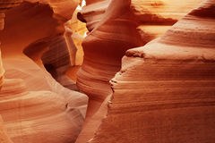 Lower Antelope Royalty Free Stock Photo