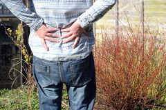 Lower back pain, arthritis. A senior man holding lower back because of pain caused by arthritis or injury stock photography