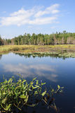 Lower Breakneck Pond Stock Image
