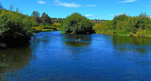 Lower Bridge View. Deschutes River as viewed from Lower Bridge Crossing - west of Terrebonne, OR royalty free stock image