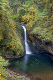 Lower Butte Creek Falls Plunging into a Pool autumn season Royalty Free Stock Photography