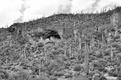 Lower Cliff Dwelling at the Tonto National Monument Stock Photography