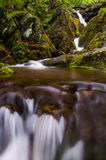 Lower Dark Hollow Falls, in it's lush, rocky enviroment in Shena Royalty Free Stock Photos