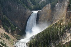 Lower fall in Yellowstone National Park Stock Photography