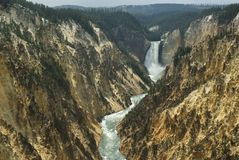 Lower fall of Yellowstone Stock Photography