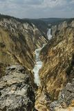 Lower fall of Yellowstone Royalty Free Stock Photos