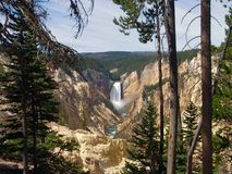 Lower Falls. At Yellowstone National Park, U.S.A royalty free stock images