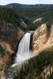 Lower falls in Grand Canyon of the Yellowstone. USA Stock Photos