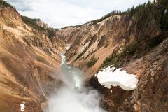 Lower Falls in the Grand Canyon of the Yellowstone River in Yellowstone National Park in Wyoming USA. Lower Falls in the Grand Canyon of the Yellowstone River in Royalty Free Stock Image